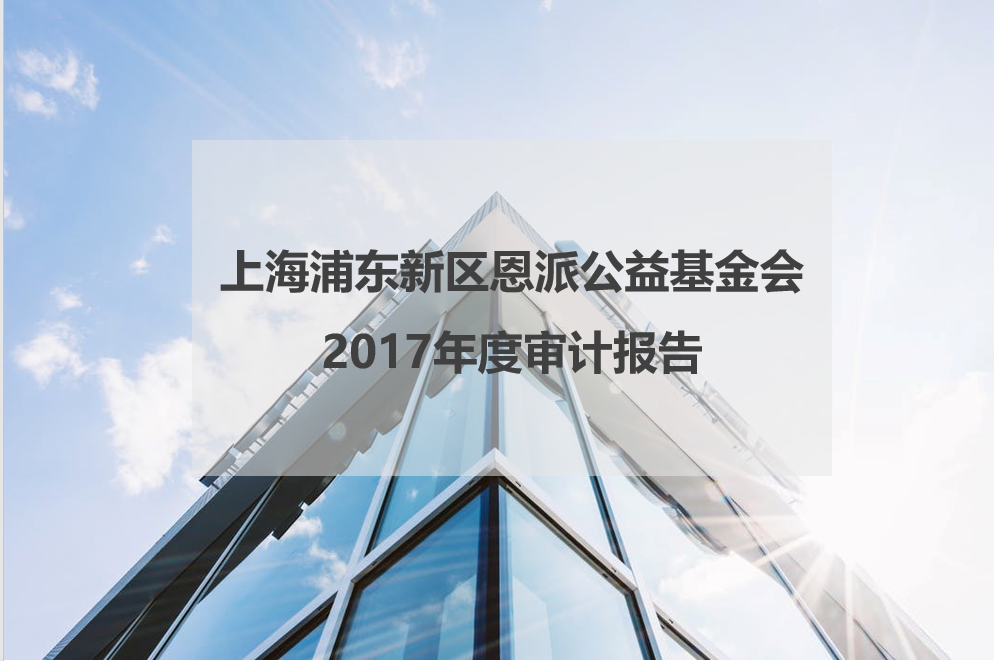 2017年度审计报告