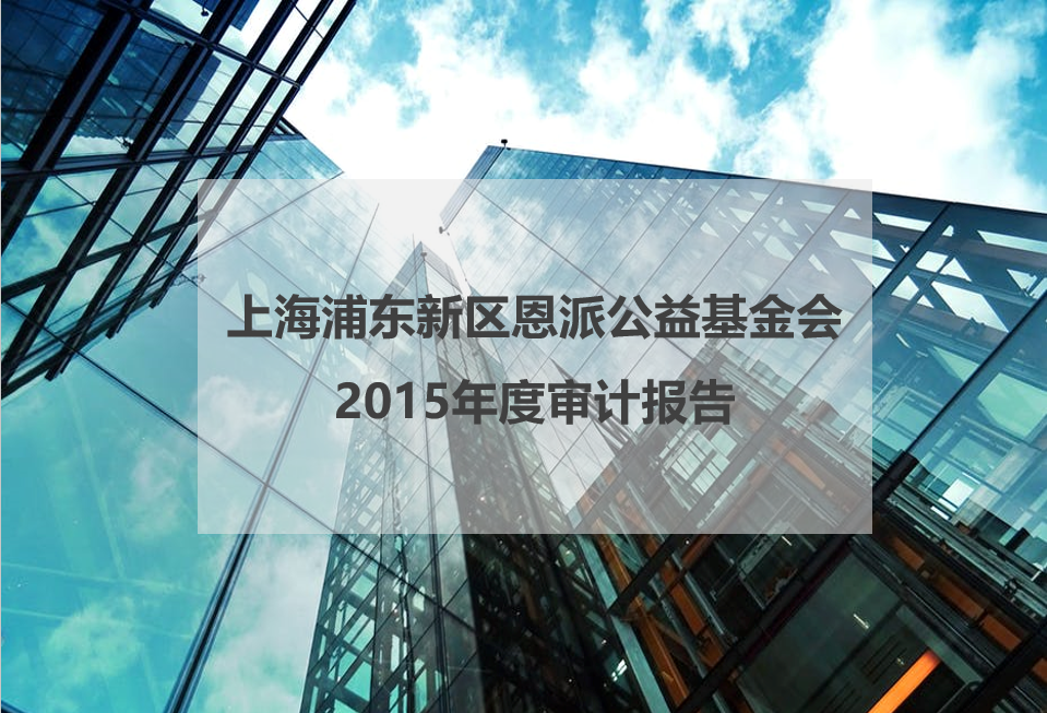 2015年度审计报告