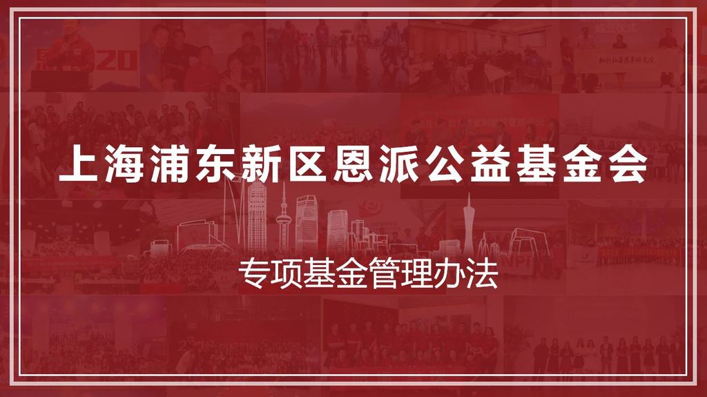上海浦东新区恩派公益基金会—专项基金管理办法